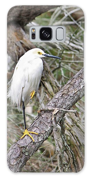 Snowy Egret 1 Galaxy Case