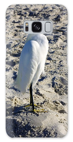 Snowy Egret At Naples, Fl Beach Galaxy Case