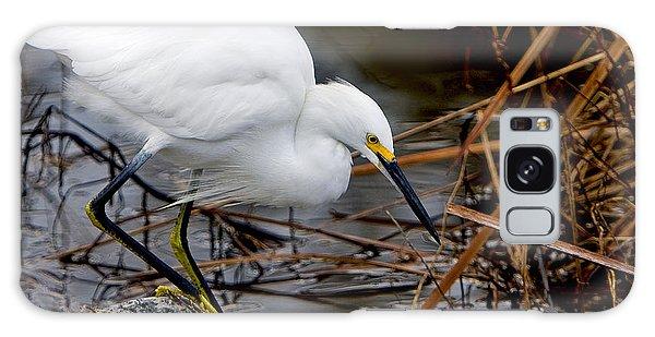 Snowy Egret Egretta Galaxy Case