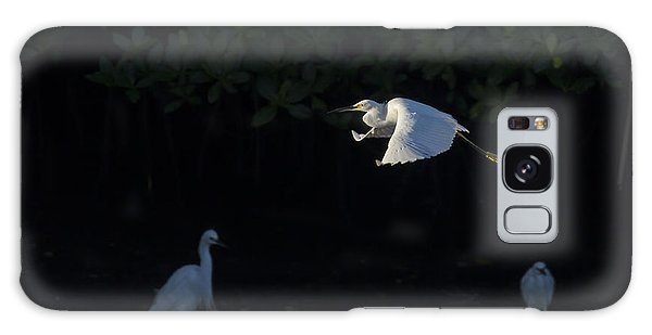 Snowy Egret Gliding In The Morning Light Galaxy Case