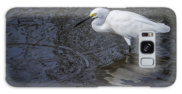 Snowy Egret Hunting Galaxy Case