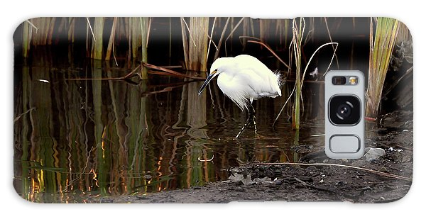 Snowy Egret In Late Afternoon Galaxy Case