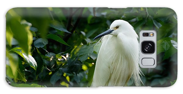 Snowy Egret In The Trees Galaxy Case