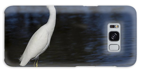 Snowy Egret Perched On A Rock Galaxy Case