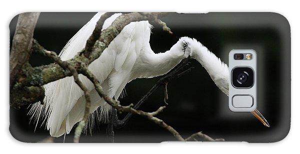 Snowy Egret Setauket New York Galaxy Case