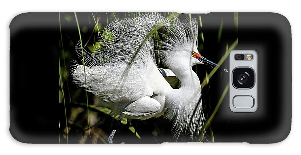 Galaxy Case featuring the photograph Snowy Egret by Steven Sparks