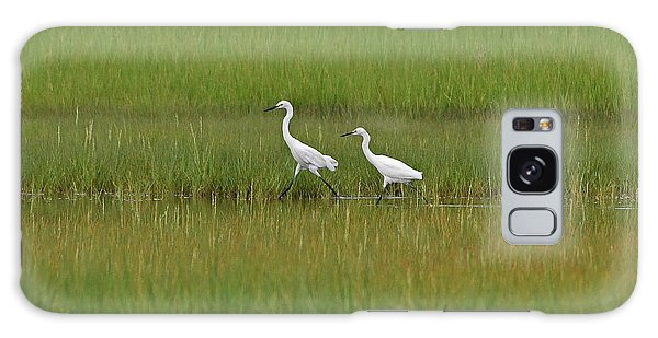 Galaxy Case featuring the photograph Snowy Egrets by Ken Stampfer