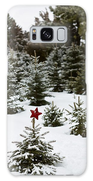 Pine Branch Galaxy Case - Snowy Forest And Small Tree In Front by Gillham Studios