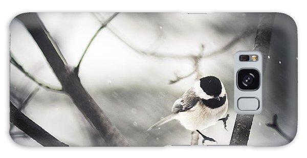Chickadee Galaxy S8 Case - Snowy Landing by Shane Holsclaw