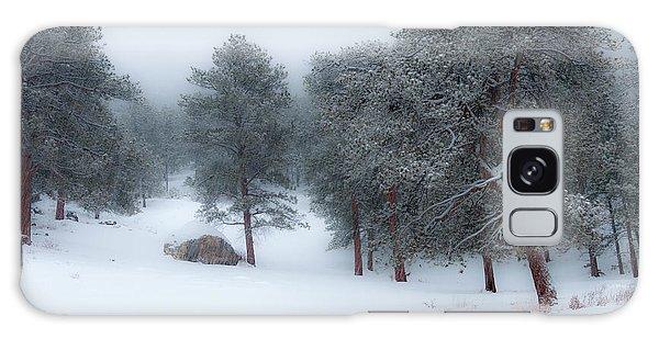 Snowy Morning - 0622 Galaxy Case