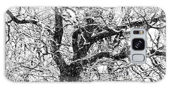 Snowy Oak Galaxy Case