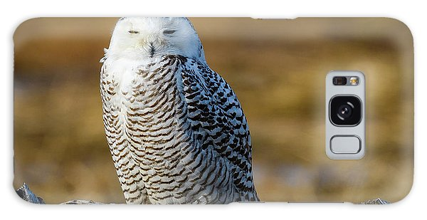 Galaxy Case featuring the photograph Snowy On Log by Michael Hubley