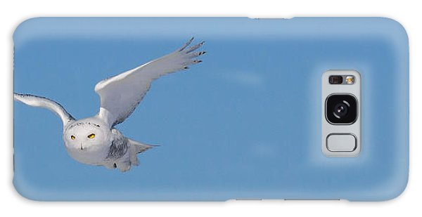 Snowy Owl - Dive Galaxy Case by Dan Traun