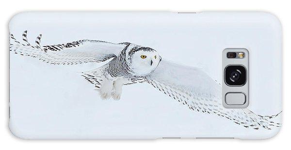 Snowy Owl In Flight Galaxy Case