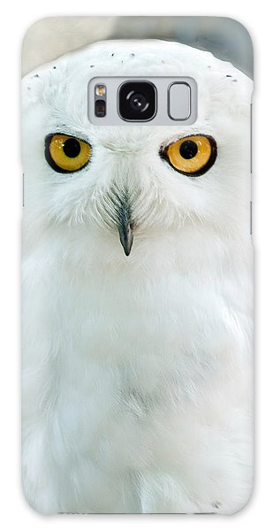 Snowy Owl Portrait Galaxy Case