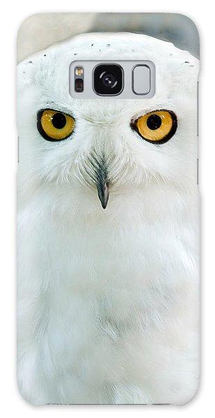 Snowy Owl Portrait Galaxy Case