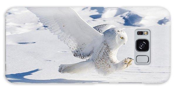 Snowy Owl Pouncing Galaxy Case
