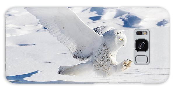 Snowy Owl Pouncing Galaxy Case