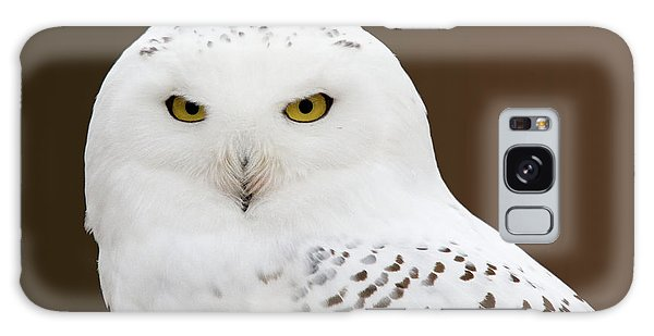 Snowy Owl Galaxy Case by Steve Stuller