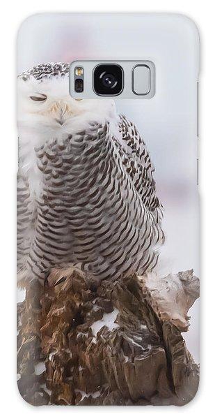 Snowy Owl Winking Galaxy Case