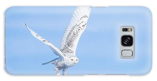 Snowy Owls Soaring Galaxy Case