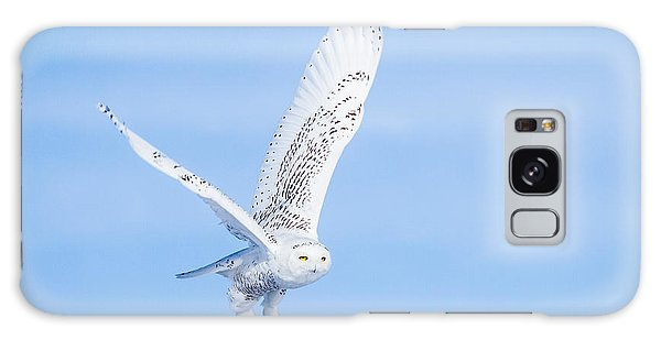 Snowy Owls Soaring Galaxy Case
