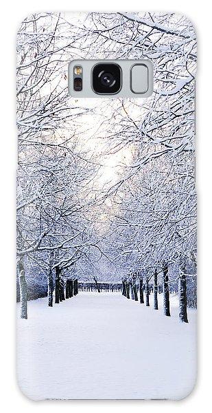 Snowy Pathway Galaxy Case by Marius Sipa