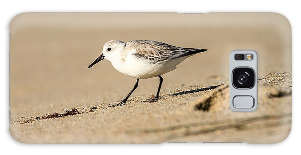 Sanderling Galaxy Case