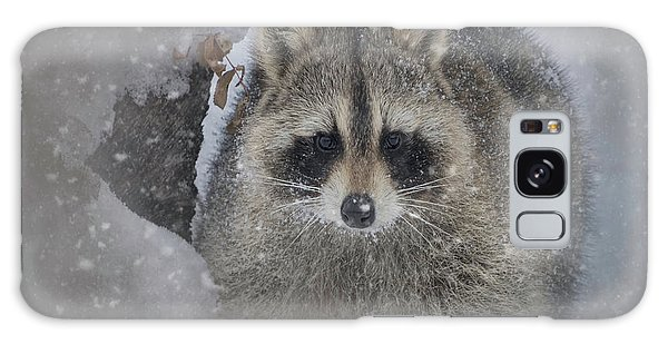 Snowy Raccoon Galaxy Case