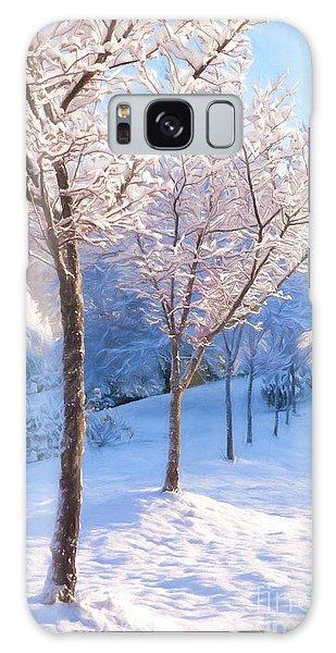 Snowy Stroll Galaxy Case by Dan Carmichael