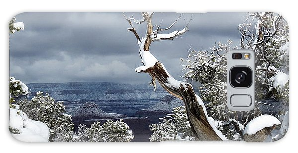 Snowy View Galaxy Case by Laurel Powell