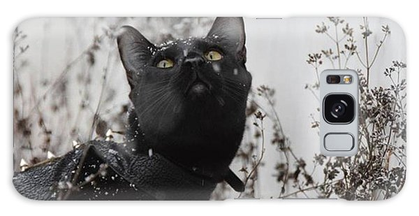 Steampunk Galaxy Case - So We Got This Wet White Stuff Called by Sirius Black Adventure Cat