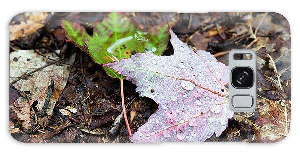 Soaken Leaves Galaxy Case