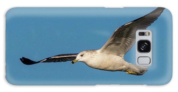 Soaring Gull Galaxy Case