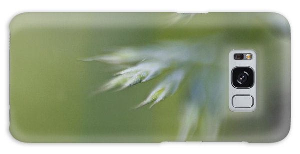 Galaxy Case featuring the photograph Soft Green by Michaela Preston
