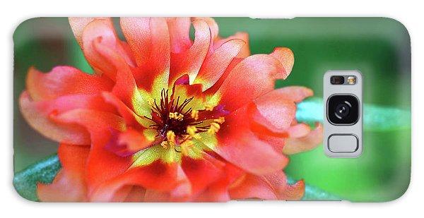 Soft Peach Ruffled Petals Galaxy Case