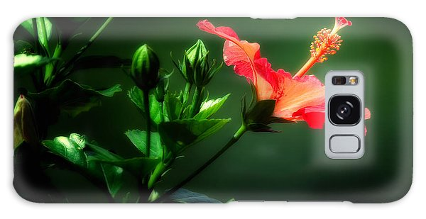 Soft Red Hibiscus Plant Galaxy Case