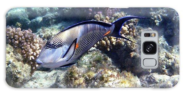 Sohal Surgeonfish 5 Galaxy Case