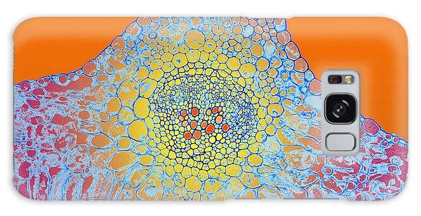 Solar Cells Galaxy Case