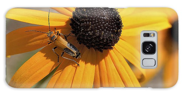 Soldier Beetle On His Flower Galaxy Case
