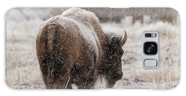 American Bison In Snow Galaxy Case