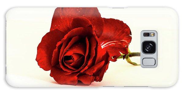 Red Rose Bud Galaxy Case