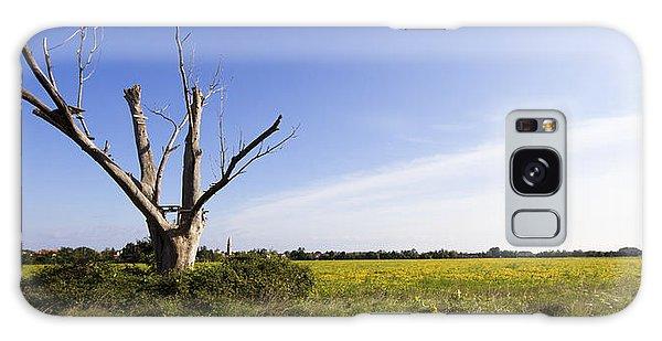 Solitary Tree Galaxy Case