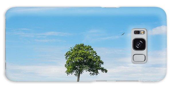 Solo Tree Galaxy Case