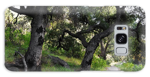 Galaxy Case featuring the photograph Solstice Canyon Live Oak Trail by Kyle Hanson