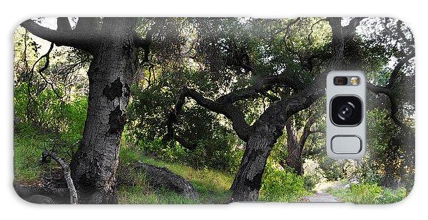 Solstice Canyon Live Oak Trail Galaxy Case