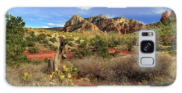 Galaxy Case featuring the photograph Some Cactus In Sedona by James Eddy