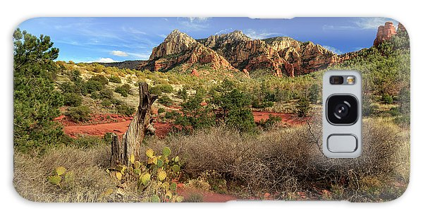 Some Cactus In Sedona Galaxy Case by James Eddy