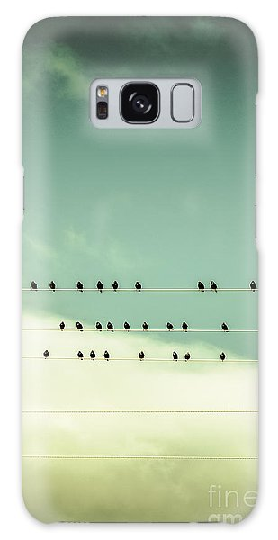 Song Bird Galaxy Case - Song Birds On Five Lined Staff by Jorgo Photography - Wall Art Gallery