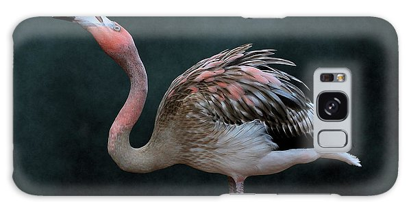 Song Of The Flamingo Galaxy Case